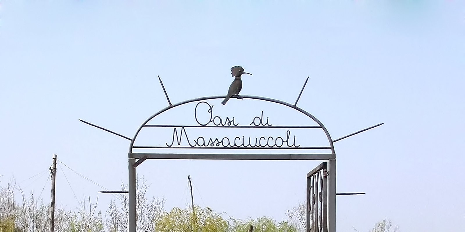 Naturoase des Massaciuccoli-Sees